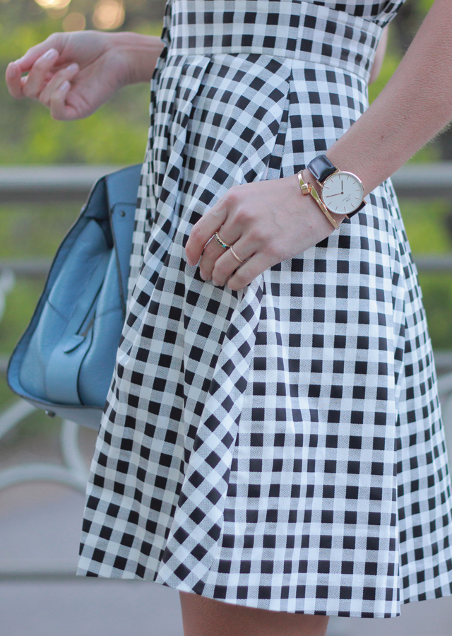 Gingham Shirtdress in Central Park