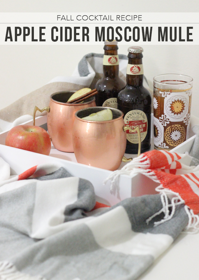 The Steele Maiden: Fall Cocktail Recipe - Apple Cider Moscow Mule